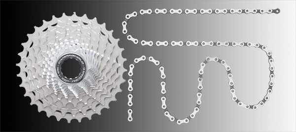 campagnolo twelve-speed