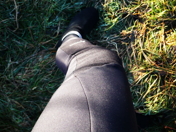 dhb roubaix tights
