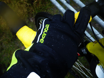 equipe windshield gloves