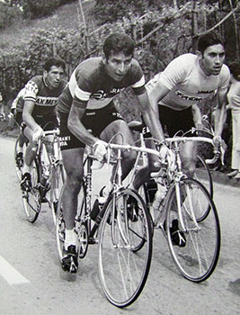 gimondo-merckx