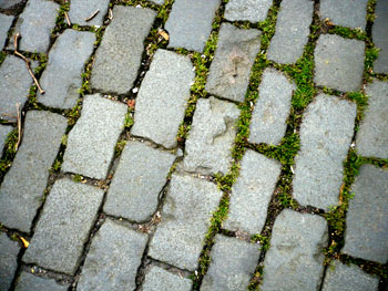 cobbles en route to ronde