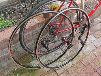 svelte wheel